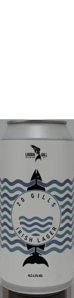 Lough Gill 20 Gills - blik